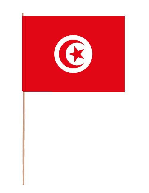 Tunesien Papierfahne mit Holzstab